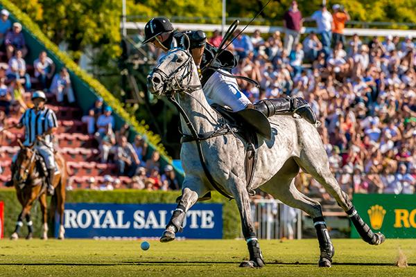 Campeonato Argentino Abierto de Polo