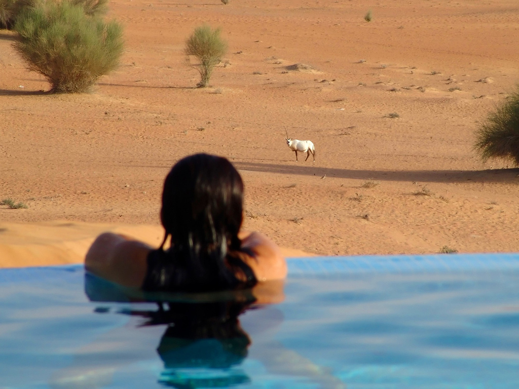 Every guest that comes to Al Maha leaves with the same conclusion: 'the desert is a very special place.'