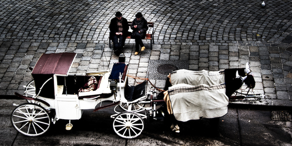 Vienna horse carriage